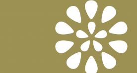 logo-fellowship-inverso
