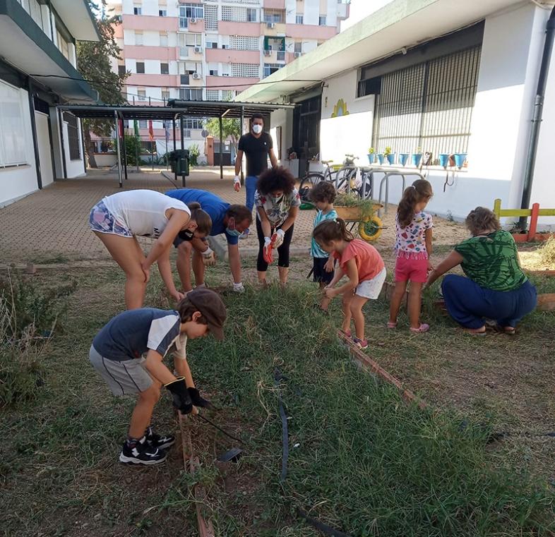 4-Huerto escolar CEIP Algafequi