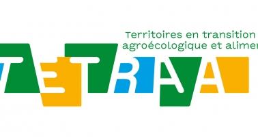 Logotype Tetraa rvb
